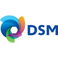Personal Assistant at Dutch State Mines (DSM)