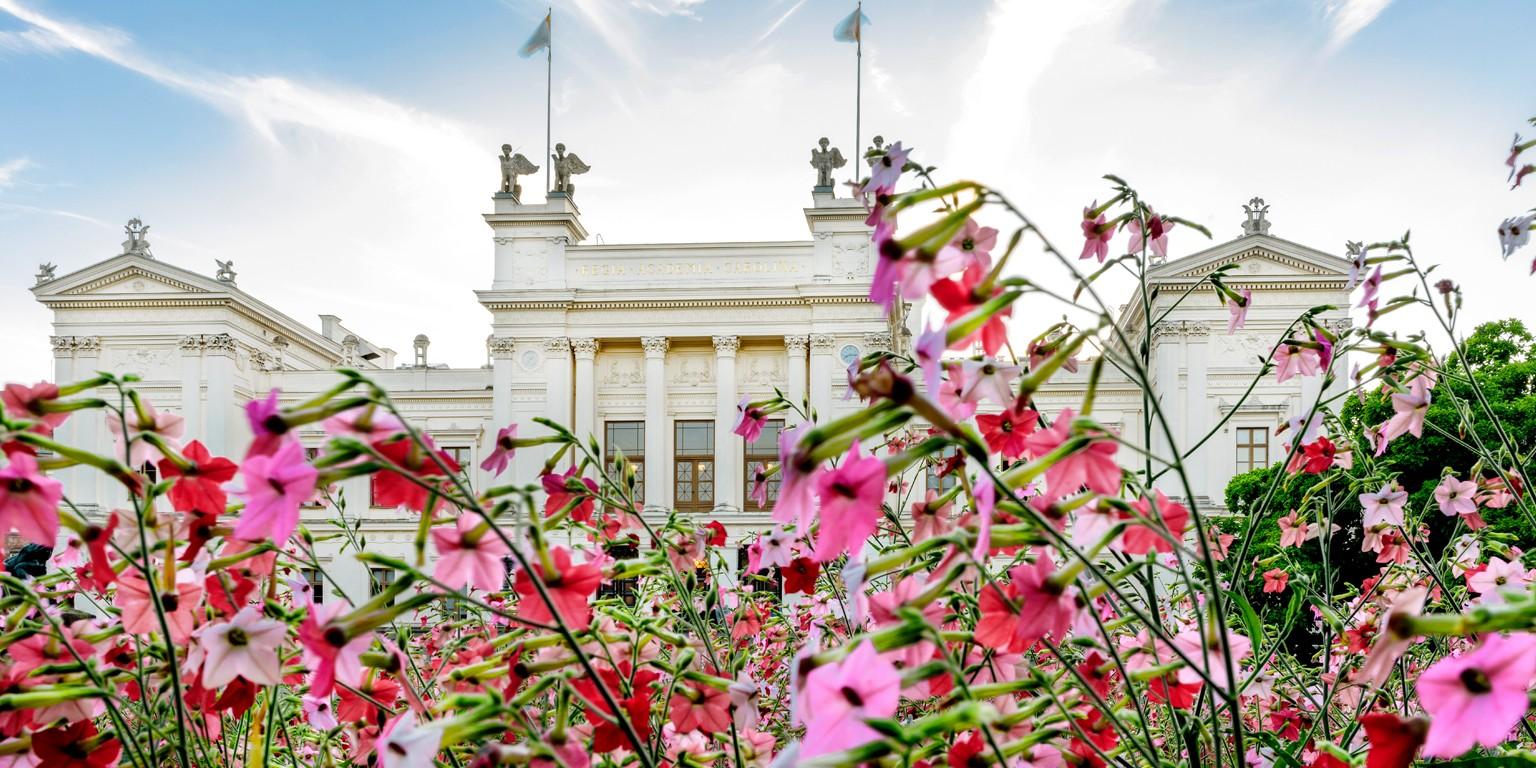 dating sweden hjärsås ovanåker dating site